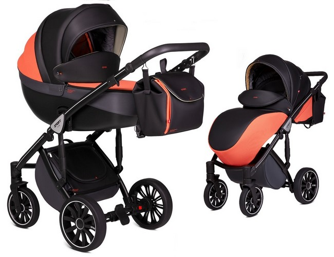 Anex Baby Sport 2018